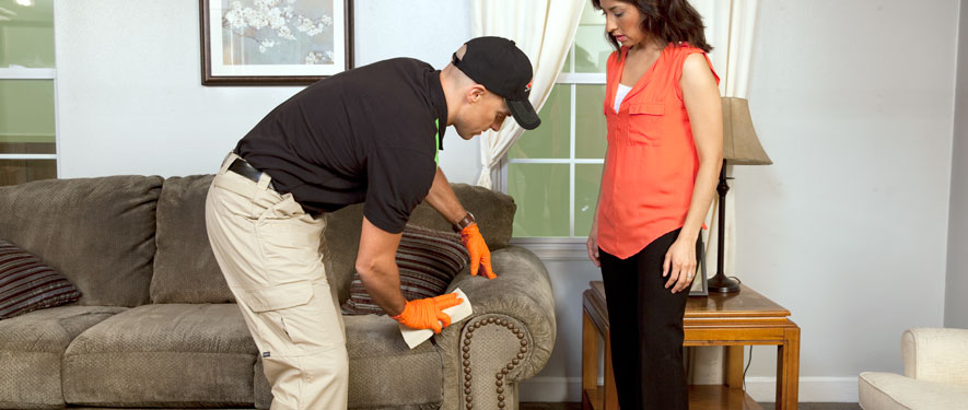 Palm Beach Gardens, FL carpet upholstery cleaning